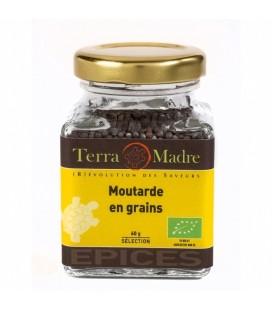 Moutarde en Grains bio