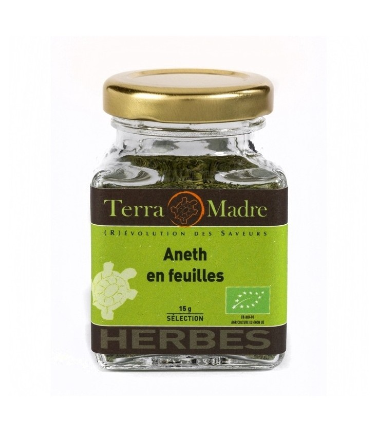 Aneth en feuilles bio