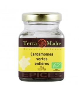 DATE DÉPASSÉE - Cardamomes vertes entières bio