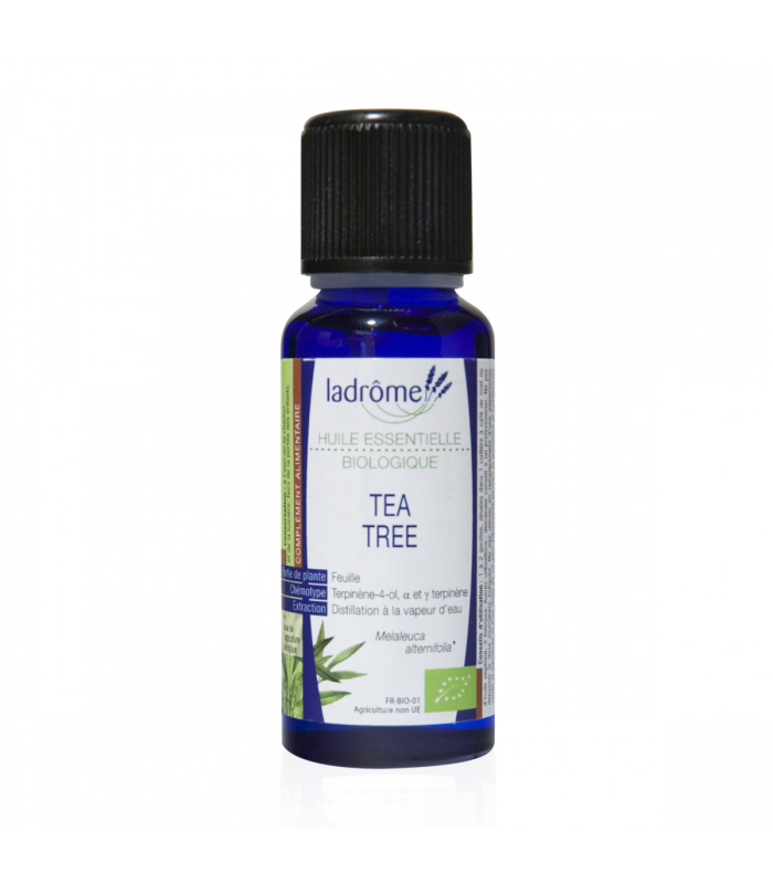 huile essentielle de tea tree bio nos meilleures courses