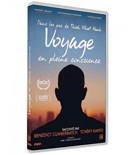 Dans les pas de Thich Nhat Hanh, Voyage en pleine conscience (DVD)