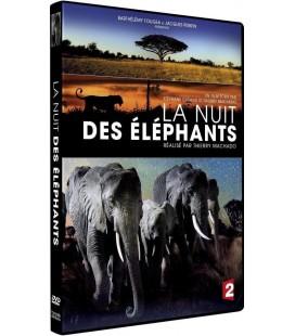 La nuit des éléphants.