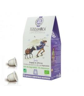 Capsules biodégradables de café bio INES x15