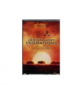 les grandes migrations