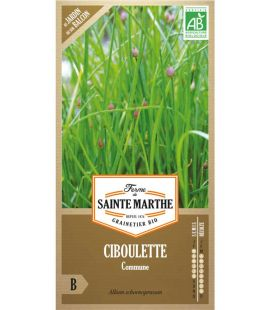 Ciboulette Commune - Semences reproductibles bio