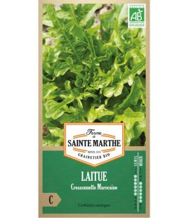 Laitue Cressonette Marocaine - Semences reproductibles bio