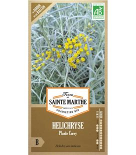 Helichryse Plante Curry - Semences reproductibles bio