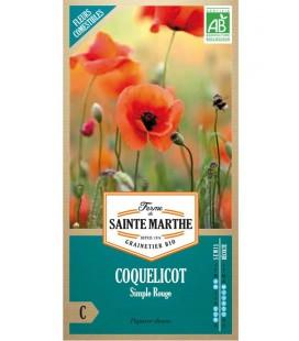 Carotte Nantaise 2 - Semences reproductibles bio