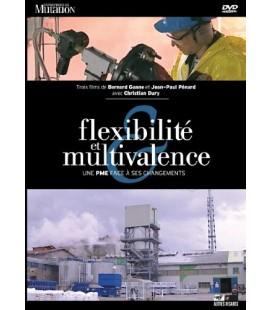 Flexibilité et Multivalence. Le Cas de l'usine Prayon