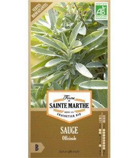 SAUGE Officinale AB - Semences reproductibles bio