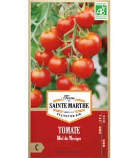 TOMATE Miel du Mexique AB - Semences reproductibles bio