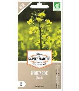 Moutarde Blanche - Semences reproductibles bio
