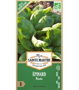 EPINARD Matador AB - Semences reproductibles bio