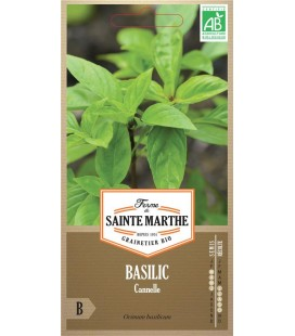 BASILIC Cannelle AB - Semences reproductibles bio