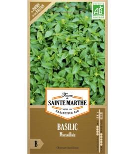 BASILIC Marseillais AB - Semences reproductibles bio