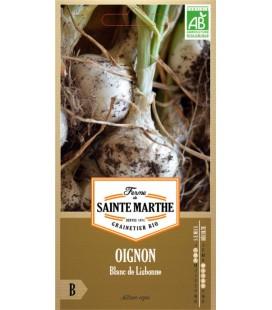 OIGNON Blanc de Lisbonne AB - Semences reproductibles bio
