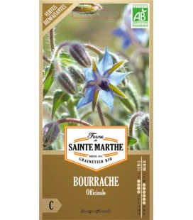BOURRACHE Officinale AB - Semences reproductibles bio
