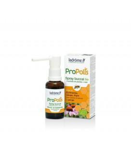 Spray Buccal Propolis, Echinacée, Sauge, Thym, Plantain , Souci et Miel bio