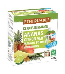 Purée Ananas, Citron vert, Mangue, Pomme bio & équitable en gourde